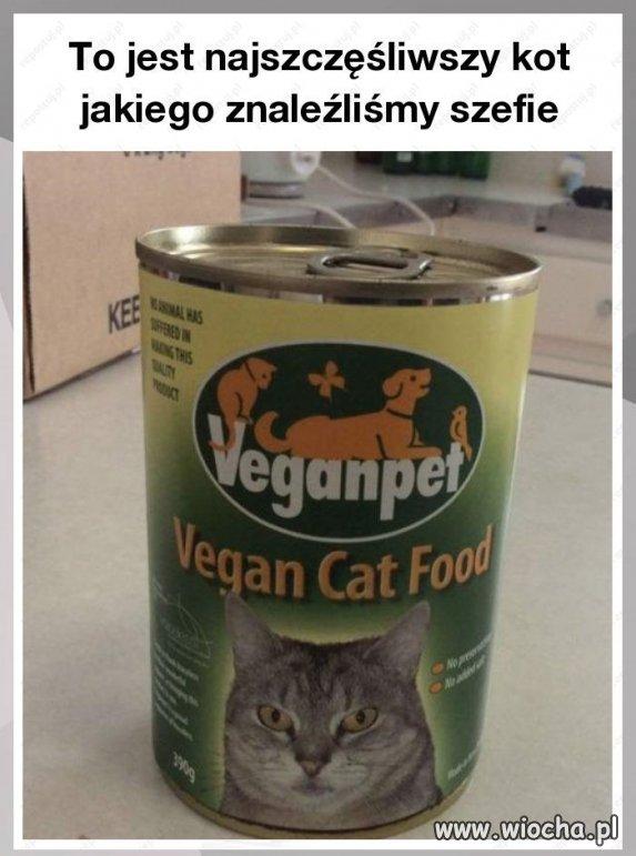 Weganska-karma-dla-kotow