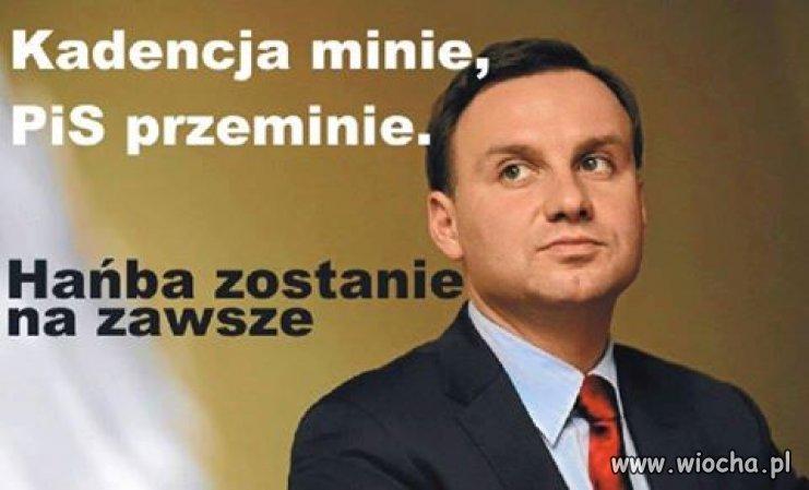Zastal-Polske-szanowana