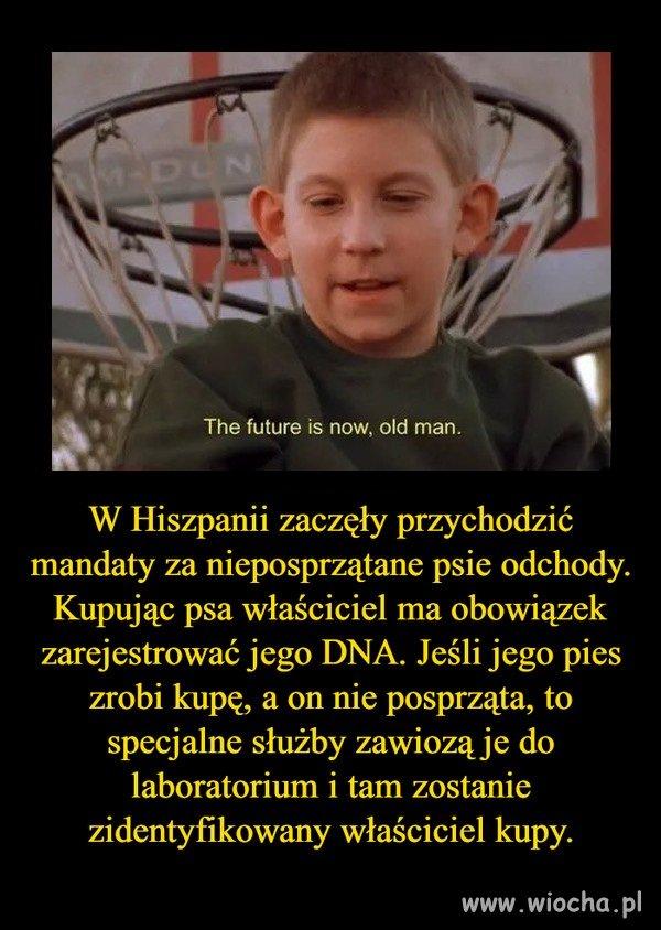 Jesli-to-prawda-to-chce-tego-w-Polsce
