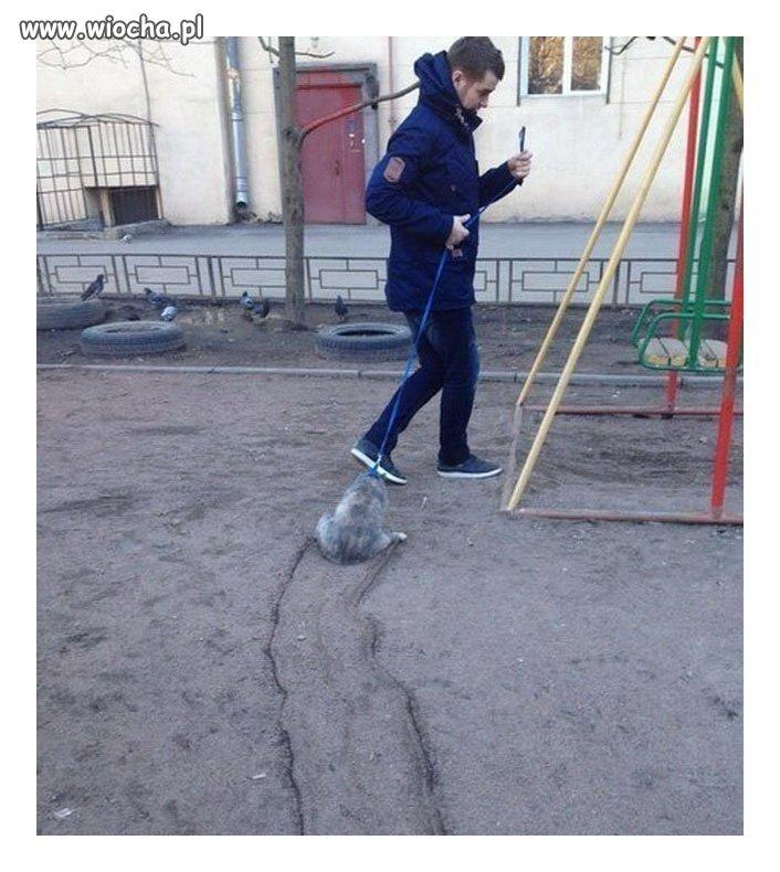 Z kotkiem na spacerze