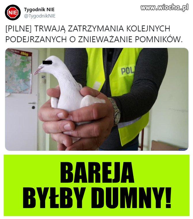 Bareja-bylby-dumny