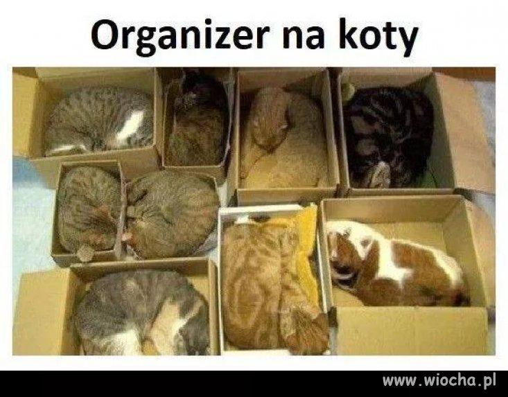 Organizer...