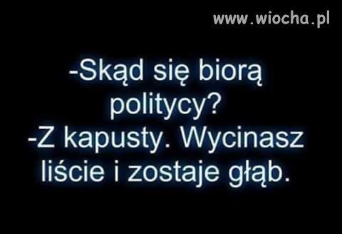 Skad-sie-biora-politycy