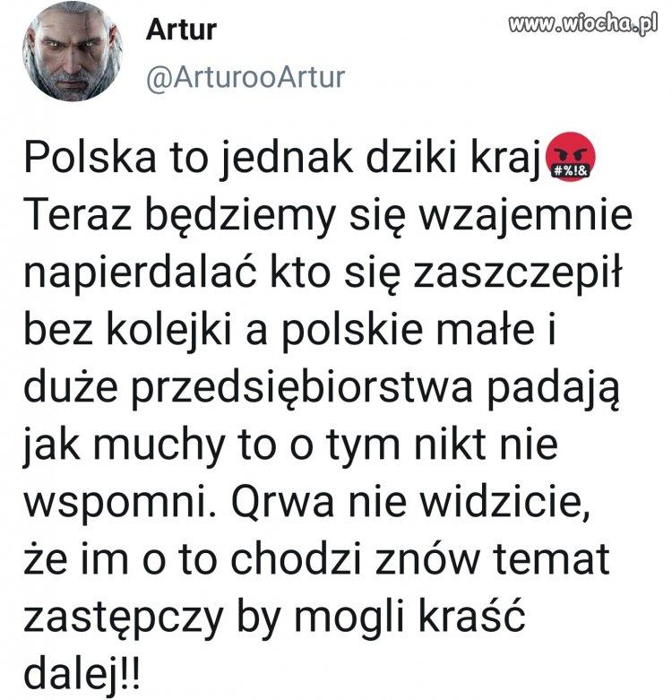 Polske-podzielil-kurdupel