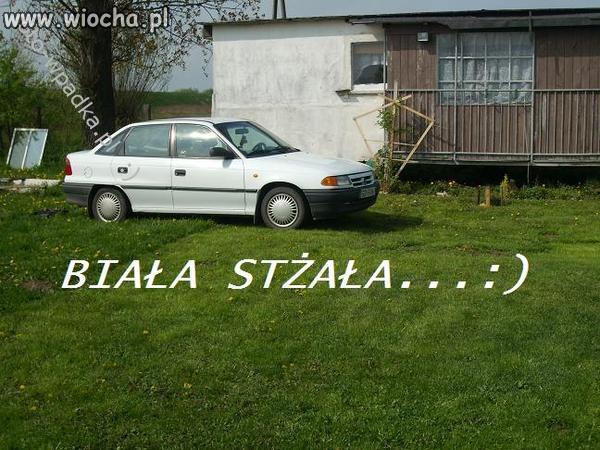 Biala-stzala