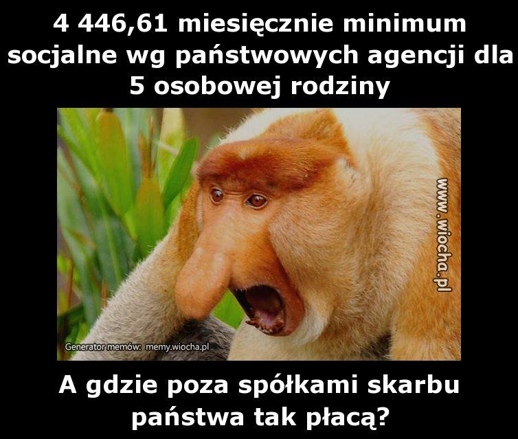 4-44661-miesiecznie-minimum-socjalne-wg
