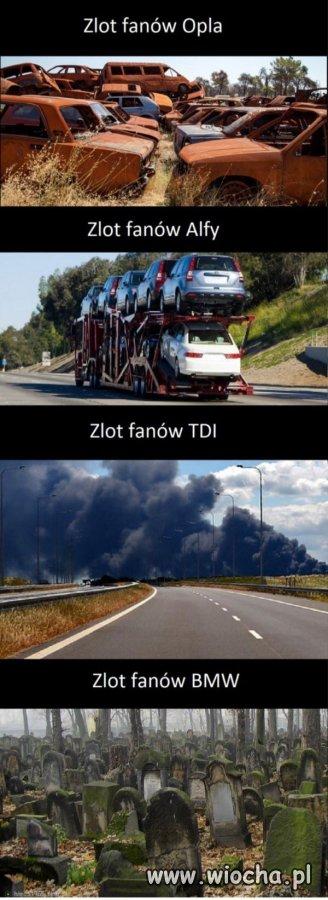 Zloty-Fanow