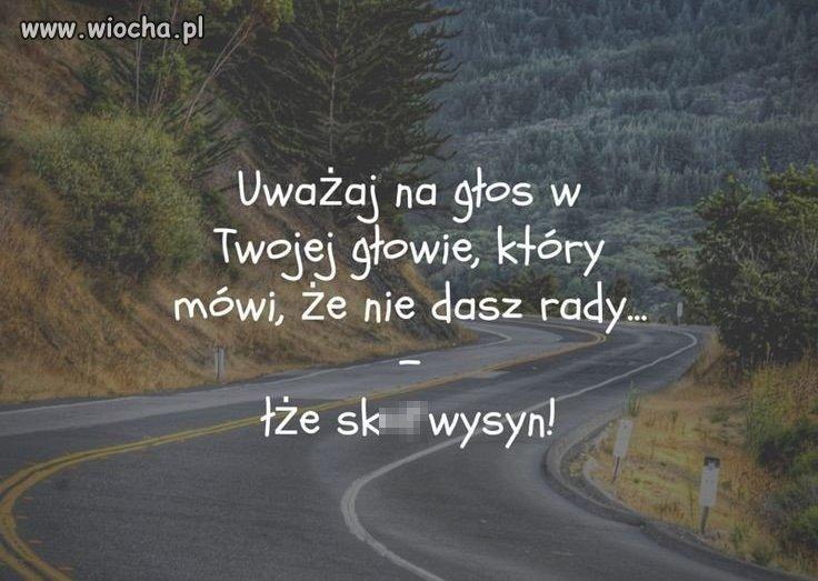 Dasz-rade