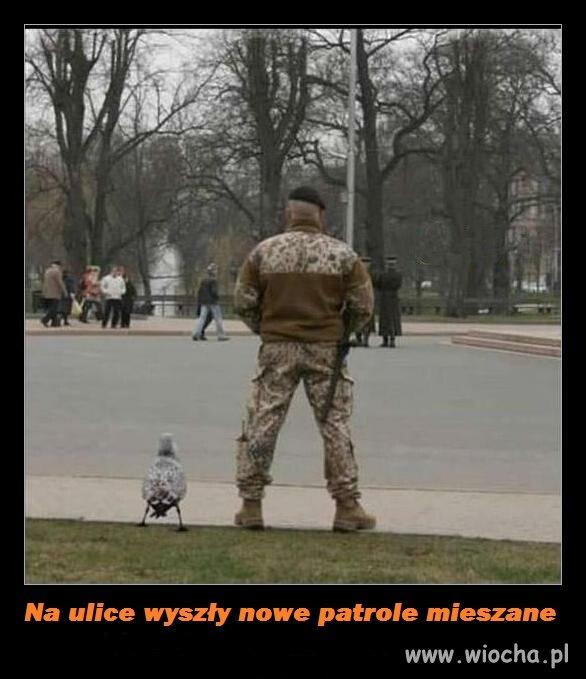 Patrol-ladowo-powietrzny