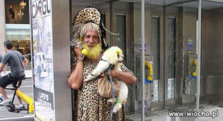 Gepard-z-pusia