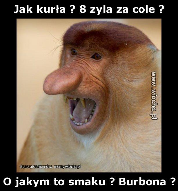 Jak-kurla-8-zyla-za-cole