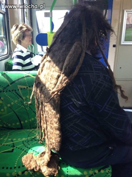Tymczasem w autobusie...