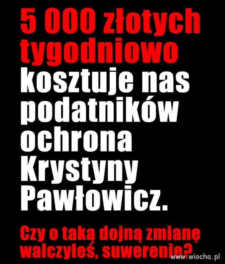 5-000-zlotych-tygodniowo