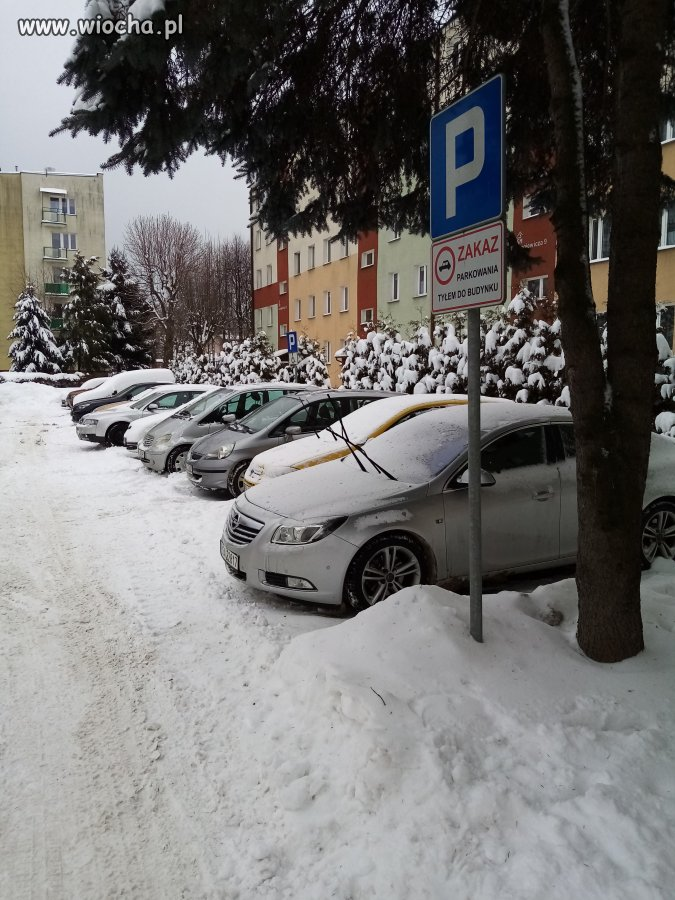Zakaz-parkowania-tylem