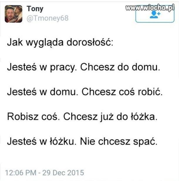 Doroslosc-w-skrocie