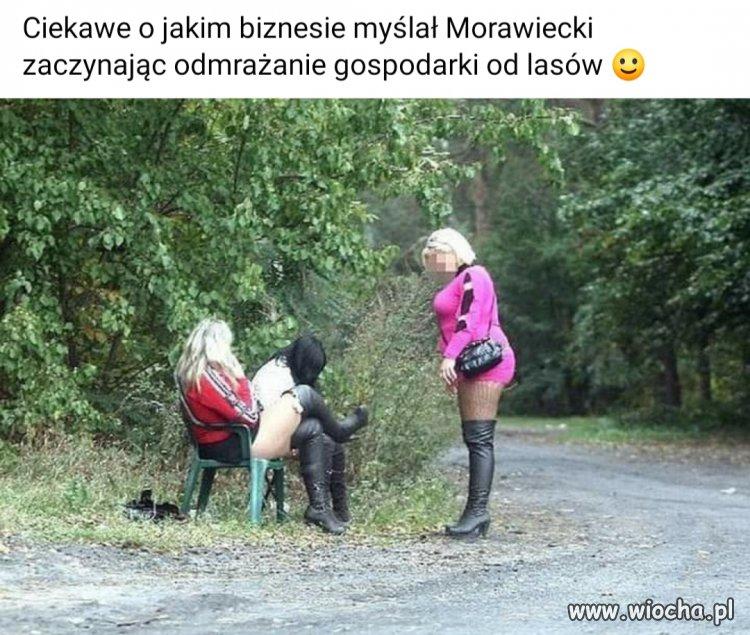 Ruchadla-Lesne-i-Dzikie-Foczki-Adriana