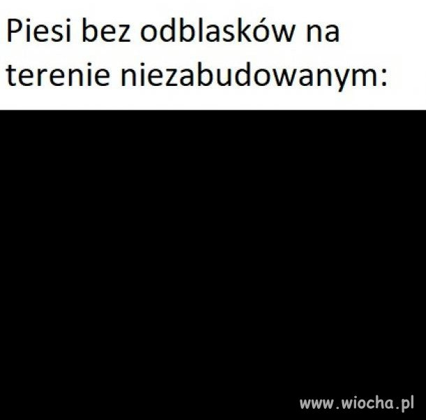 Piesi-bez-odblaskow