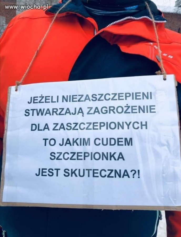 Pytanie-do-Panow-Morawieckiego-i-Niedzielskiego