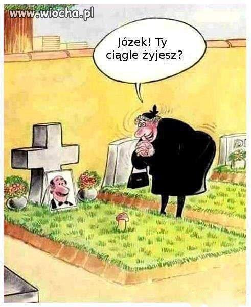 Dlugowiecznosc-Jozka