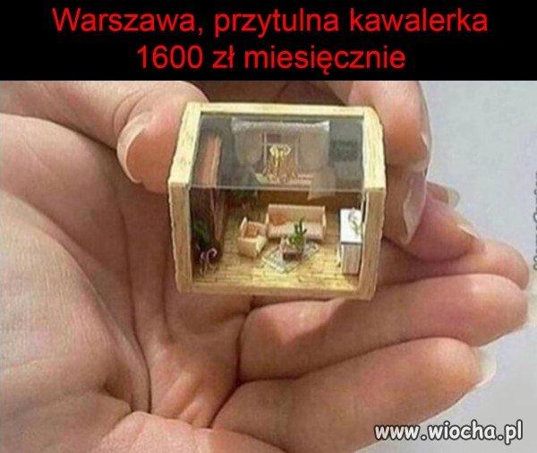 Ktos-szuka-mieszkania