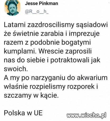 To Polska PiSu w Unii Europejskiej...