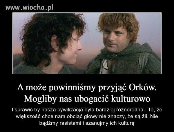 Takie-tam-przemyslenia-Frodo-i-Sama