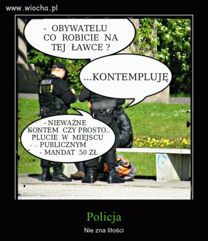 P jak policja