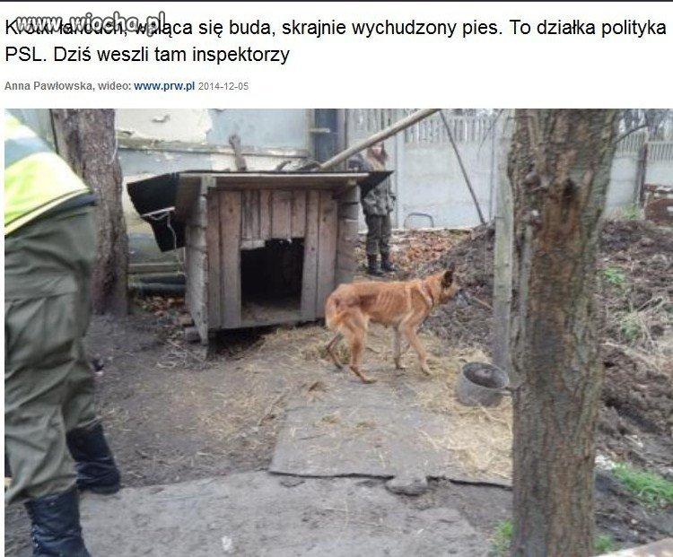 Dzialka-Piotra-Zimnickiego-prezesa-PSL-w-Walbrzychu