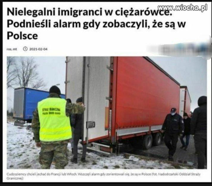 Nielegalni imigranci
