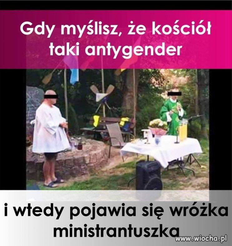 Faszyn from