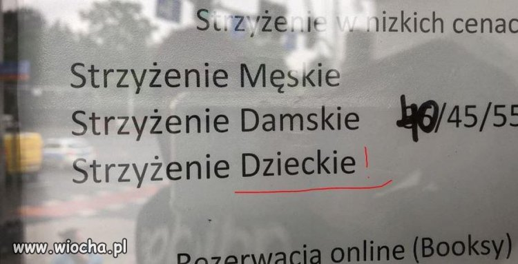 Slownik-polskopolski