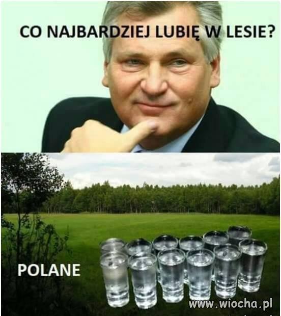 Polane