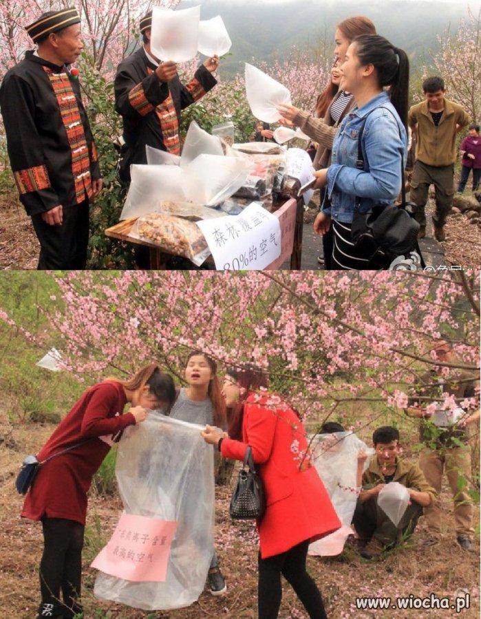 W-Chinach-sprzedaja-swieze-powietrze-miastowym