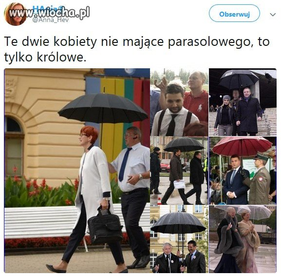 Parasolowi