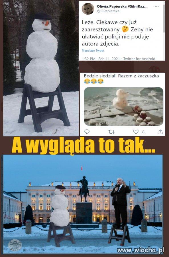 Zniewazenie-zarodkow-sniegu