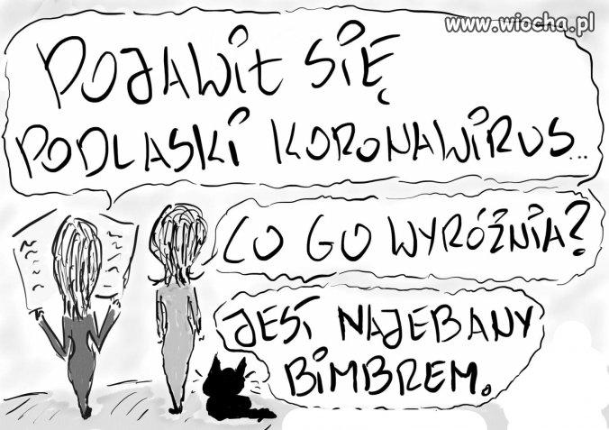 Polska odmiana