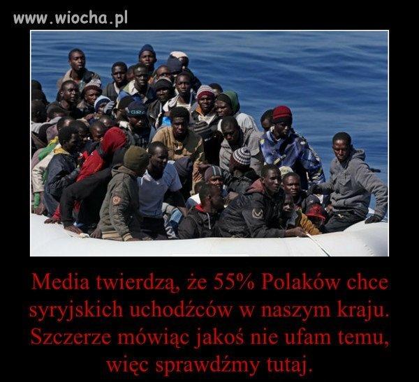 Uchodzcy-nie-sa-nam-absolutnie-do-niczego-potrzebni