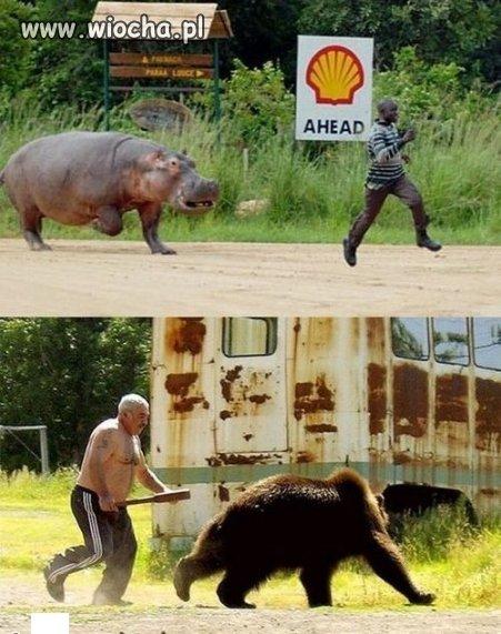 Afryka vs Rosja