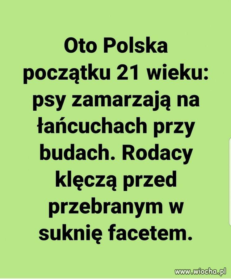 To-jest-Polska-wlasnie.-XXI-wiek