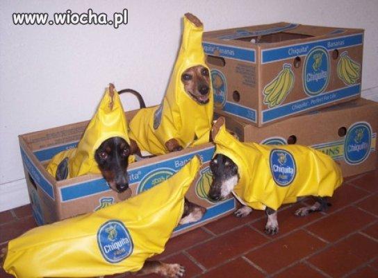 Juz-nie-sa-nam-potrzebne-hostessy-do-promowania-bananow