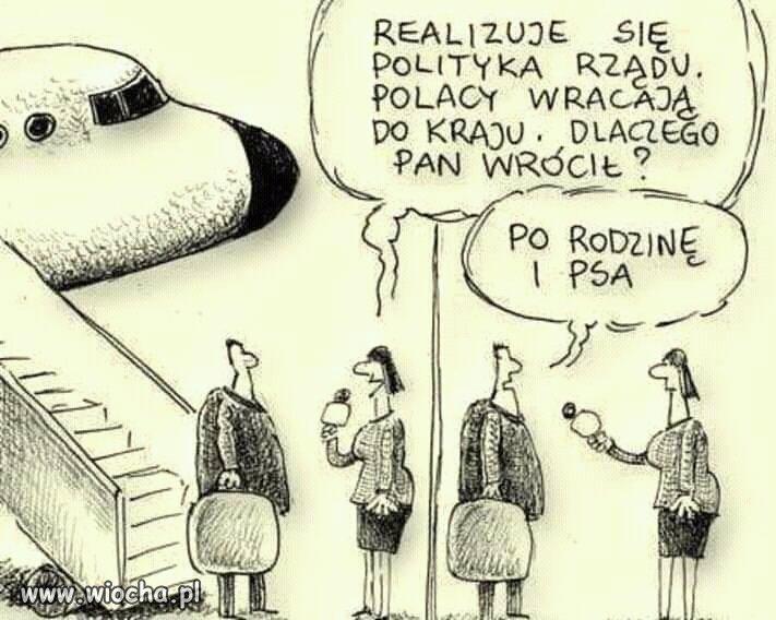 Polacy-Wracaja