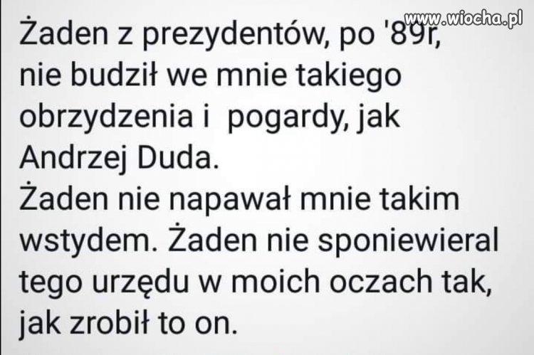 WyPADzPalacu