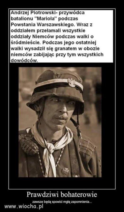 Radosna-tworczosc