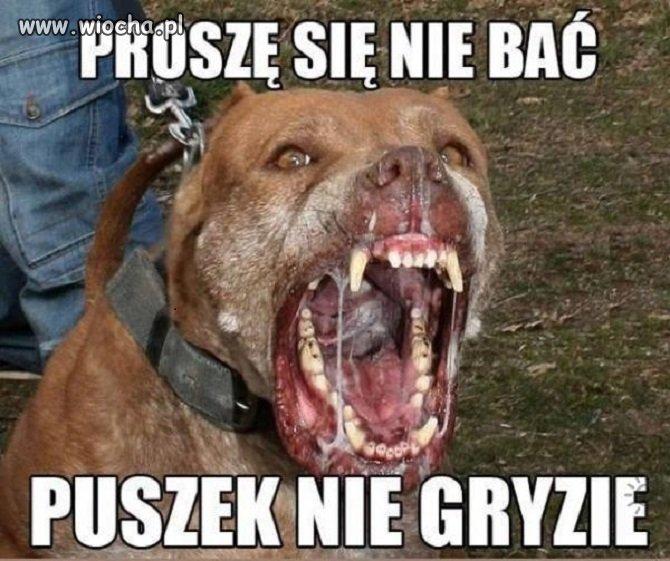 Tak jest w Polsce
