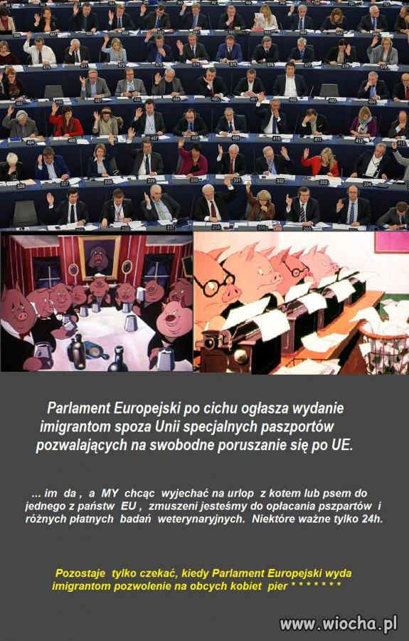 Nielegalni--imigranci-otrzymaja-za-darmo-paszporty