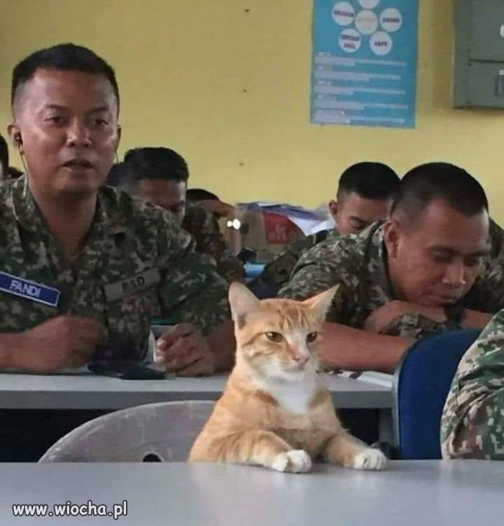 Szkolenie agenta ...