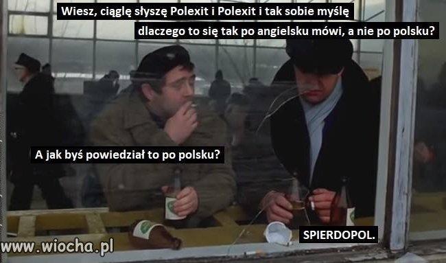 Polacy-nie-gesi