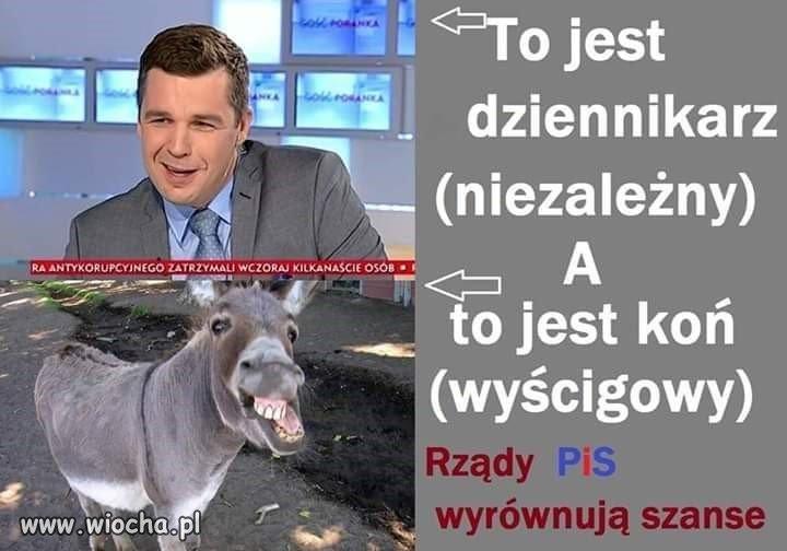 Dziennikarz-niezalezny