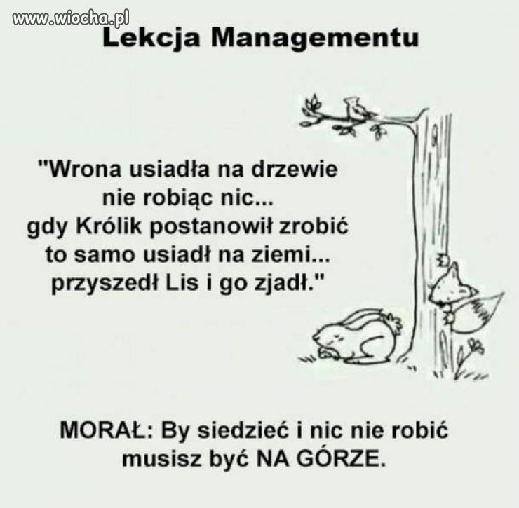Politycy-ten-moral-odkryli-dawno