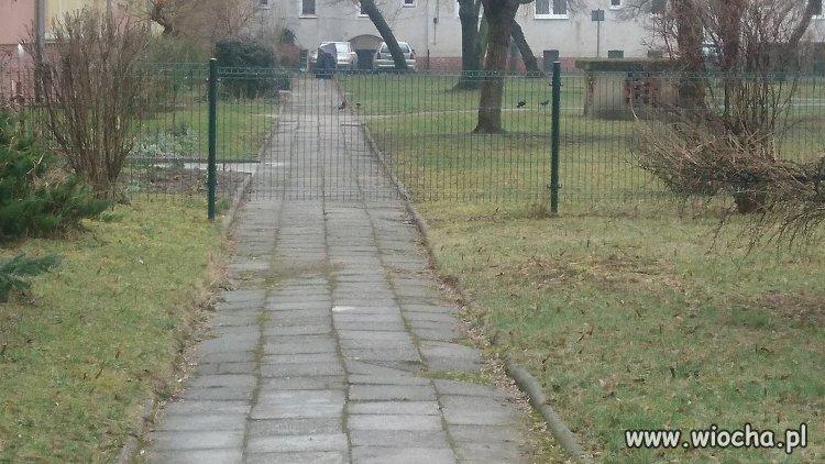 Wroclaw-i-plot-na-srodku-chodnika